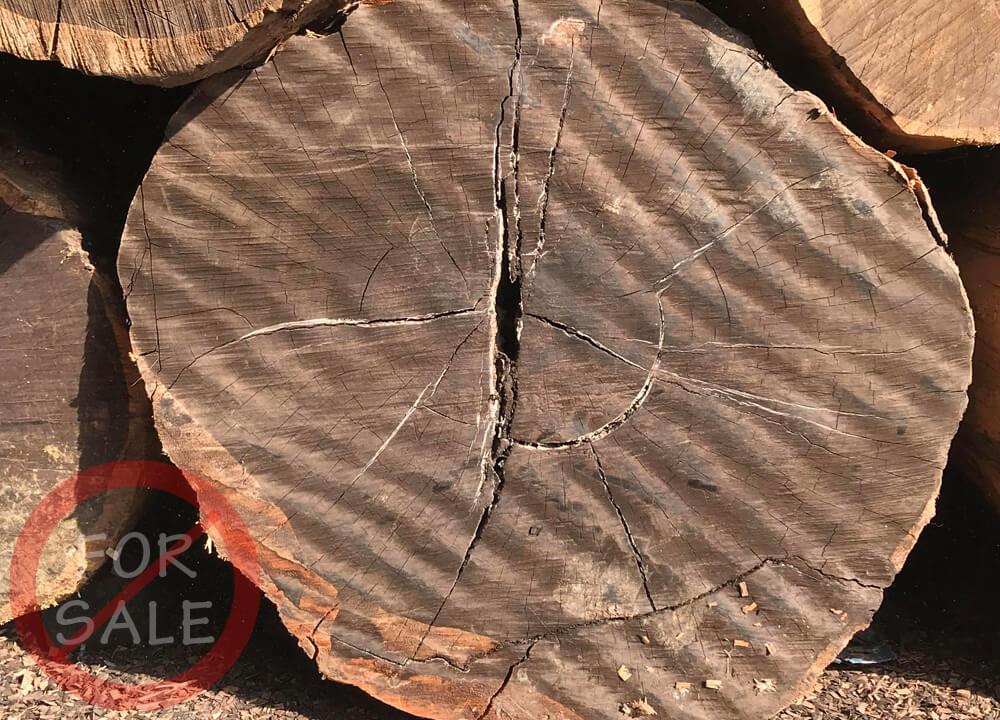 ebony-wood-main